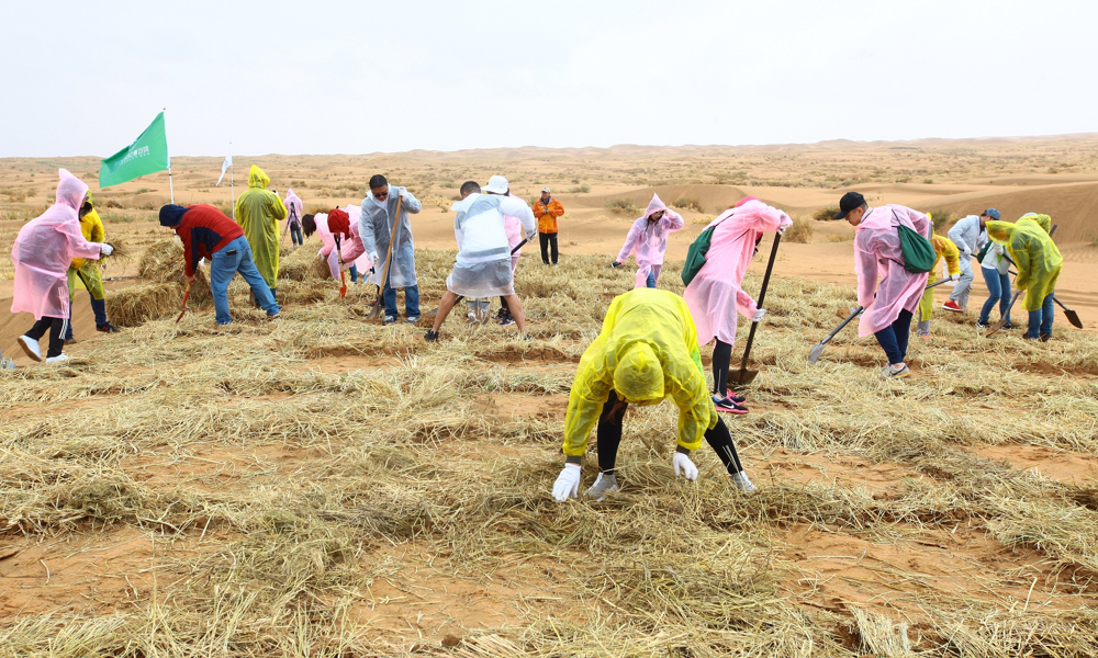We supported the tree planting programme of the SEE Foundation in Ala Shan Desert to reduce the threat of desert dust storms and create a more hospitable environment in arid regions.